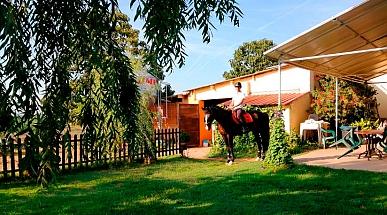 Clases particulares caballo Lleida